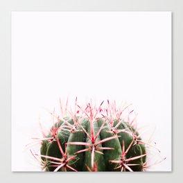 cactus red Canvas Print