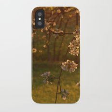 Golden Light over Apple Blossoms iPhone X Slim Case