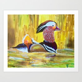 Colorful Mandarin Duck Floating on the water Art Print