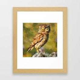 Espreita Fascinante Framed Art Print