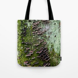 Turkey Tail on a Tree Bark in Japan - Dreamy Forest Wall Art - Mysterious Nature Prints - Botanical Structures - Close-up Photography Tote Bag