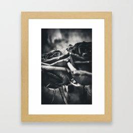 Lock Framed Art Print