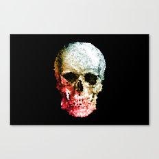 Skull Coloride Canvas Print