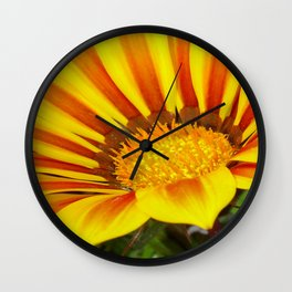 Orange and Rust Color Gazania Montezuma Macro  Wall Clock