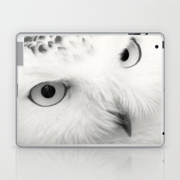 owl chouette bird white Laptop & iPad Skin