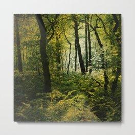 Dark Woodland Metal Print