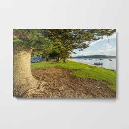 Governer Phillip Park, Palm Beach, Sydney Metal Print