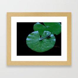 Landing Pad Framed Art Print