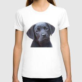 Puppy, Black Labrador, Baby Animals Art Print By Synplus T-shirt