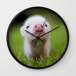 Little Pig Wall Clock