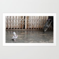 Mr Pigeon Art Print