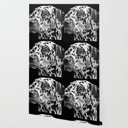 Dalmatians Wallpaper