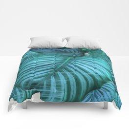 Fast Calathea Comforters