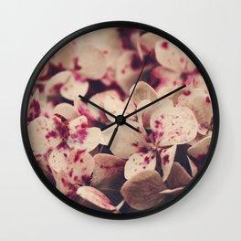 hydrangea - pink freckles Wall Clock