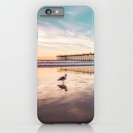 Marion's Gull iPhone Case