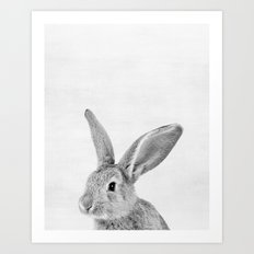 Baby Rabbit Peekaboo print Art Print