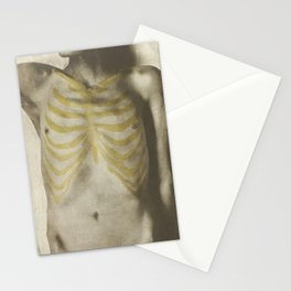 Vintage Anatomical Photo, 1908 - Male Stationery Cards