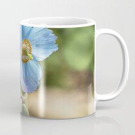 Meconopsis Poppies Coffee Mug