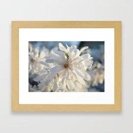 Angel of Spring Framed Art Print