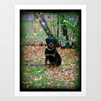 puppy Art Prints featuring Puppy by PSimages