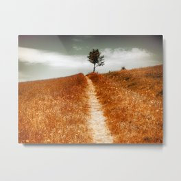 Tree On The Way Metal Print