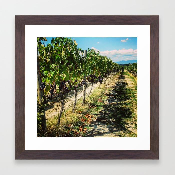 Vineyard In Tuscany Framed Art Print By Lularound Society6
