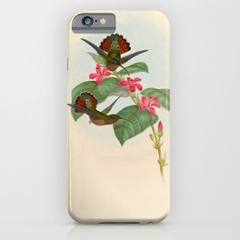 Rufous-breasted Hermit Hummingbird by John Gould, 1861 (benefitting the Nature Conservancy) iPhone Case