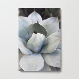 Agave in Blue Metal Print