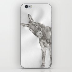 El Burro iPhone & iPod Skin