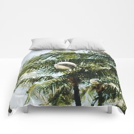 Bali Disco Comforters