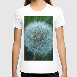 Dandelion 2 -diente de leon T-shirt