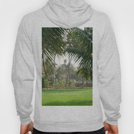Exotic Palm Trees Hoody