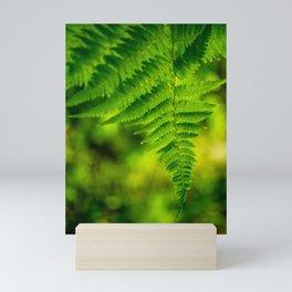 Fern Leaf Mini Art Print