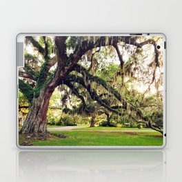 Live Oak Tree with Spanish Moss Laptop & iPad Skin