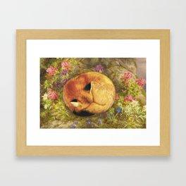 The Cozy Fox Framed Art Print