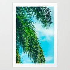 Tropical Palms Maui Hawaii Art Print