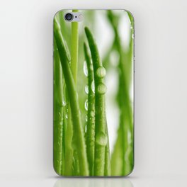 Green gras 03 iPhone Skin