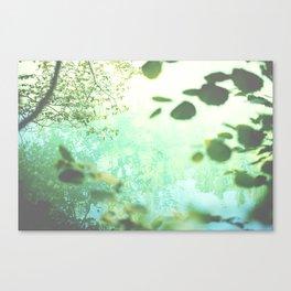 Green softness No1 Canvas Print