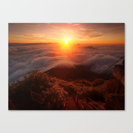 sun shine2 Canvas Print