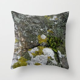 Coastal Rocks With Lichens and Ferns Throw Pillow