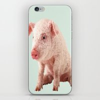 pig iPhone & iPod Skins featuring Pig by Dora Birgis