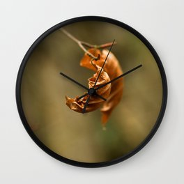 lonely leaf Wall Clock