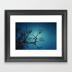 Pigeon Silhouette  Framed Art Print