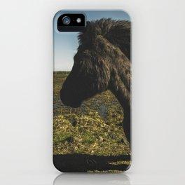 Black Icelandic Pony iPhone Case