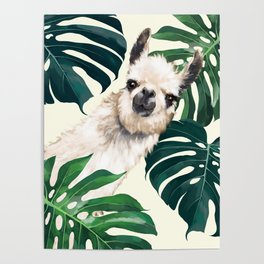 Sneaky Llama with Monstera Poster