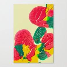 Roche Canvas Print