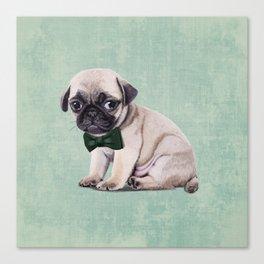 Angry Pug Canvas Print