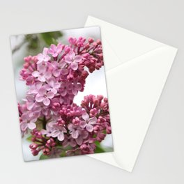 Lilacs Early Spring Stationery Cards
