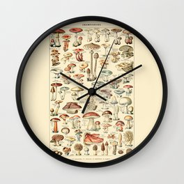 Trippy Vintage Mushroom Chart // Champignons by Adolphe Millot 19th Century Science Artwork Wall Clock