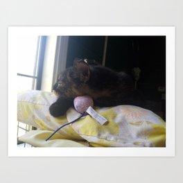 Sleepy Spaymart Kitty Art Print
